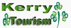 Pinguis Web Design Business mid kerry tourism design Logo created
