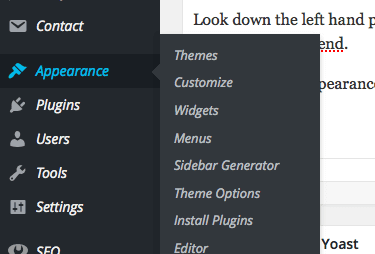 Apperance Options in WordPress