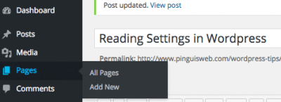 Settings set to Home Page and Blog Page